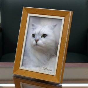 ramu_cat_5