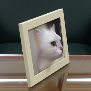 ramu_cat_3